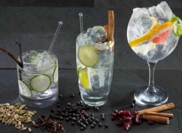 El mejor Gin-tonic