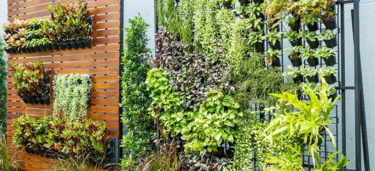 ¿Cómo hacer un jardín vertical, ideas y consejos?